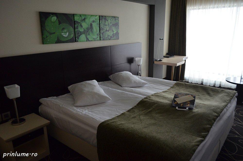 Predeal - Hotel Orizont - camera 0001
