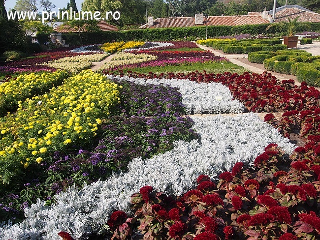 Gradina Botanica Balcik