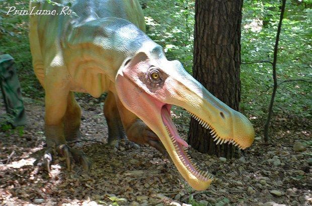 Parcul cu dinozauri Rasnov (20)